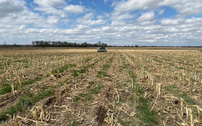 60-Inch Corn &Cover Crops